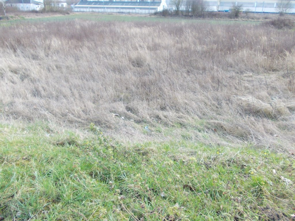 Terrain b tir beautor achat vente acheter un terrain for Acheter un terrain financement